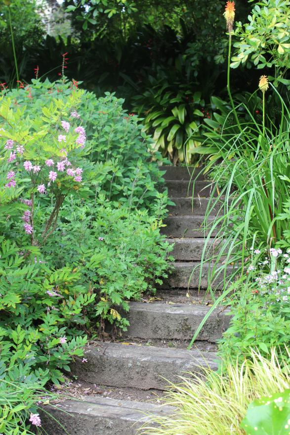 HIDDEN STAIRWAY: The stairway in Bev McConnell's garden leads to more beautiful serenity.