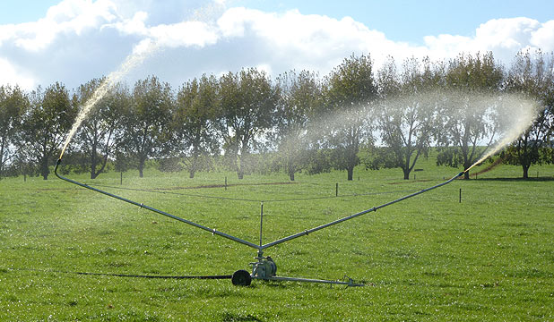 An effluent irrigator works well on a Waikato farm.