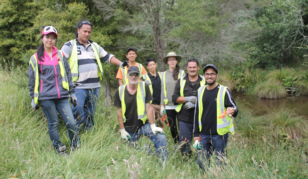 STEPPING UP: Volunteers help establish native on the banks of the Papakura Stream in Brookby.