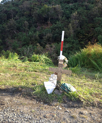 Barry Pearson crash site