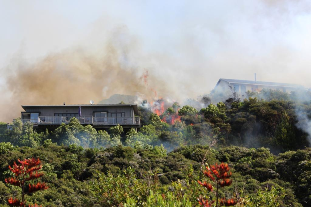 Fire tore through residential areas in Port Underwood.
