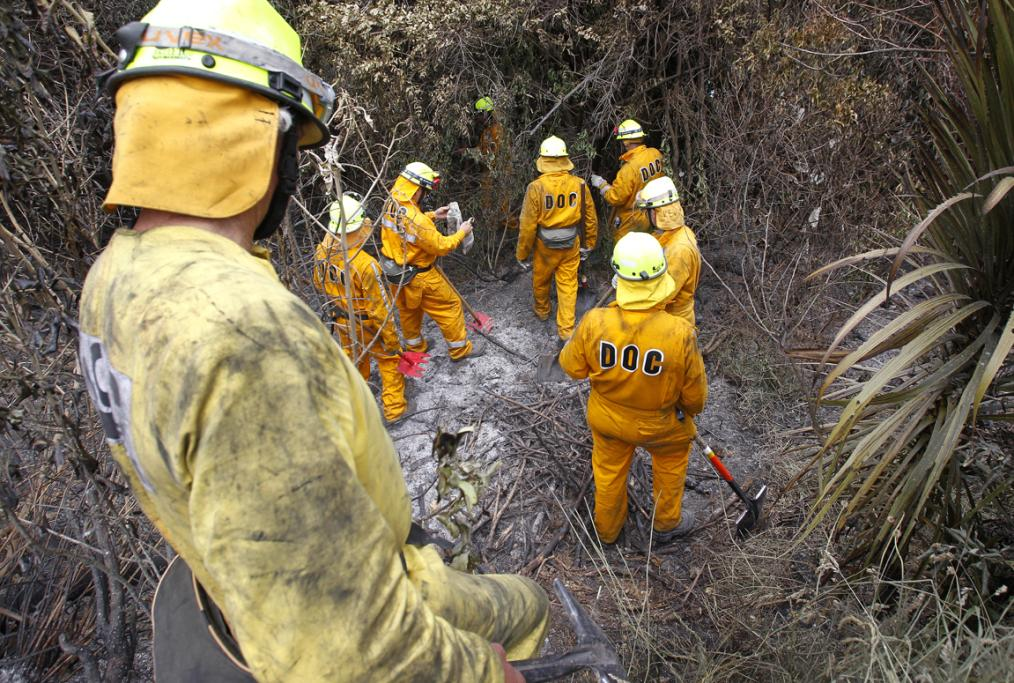 Teams were dispatched to survey the damage caused by the Port Underwood fire.