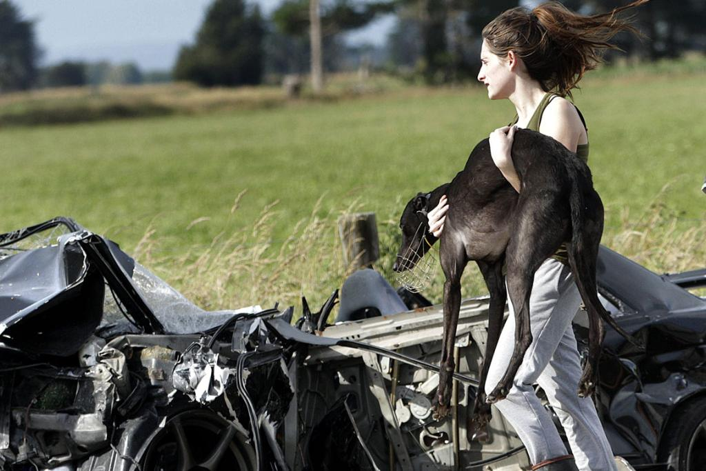 PAIN: A woman carries an injured greyhound after a car and van collided on the corner of Karere Road and No1 Line near Palmerston North.