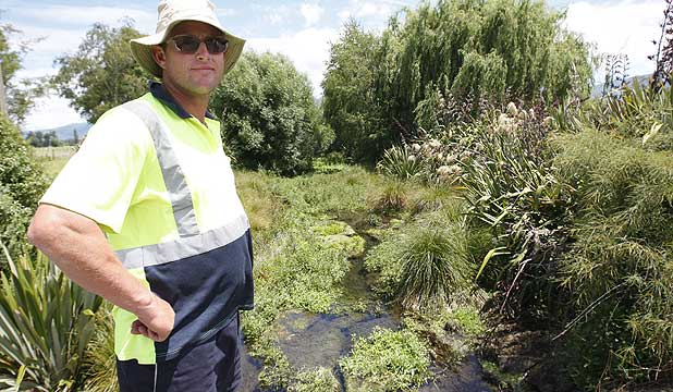 Takaka Fonterra environmental operator Simon Page misses the 60-year-old female long finned eel ''Harry'' who was recently harvested from the award winning Watercress Creek.