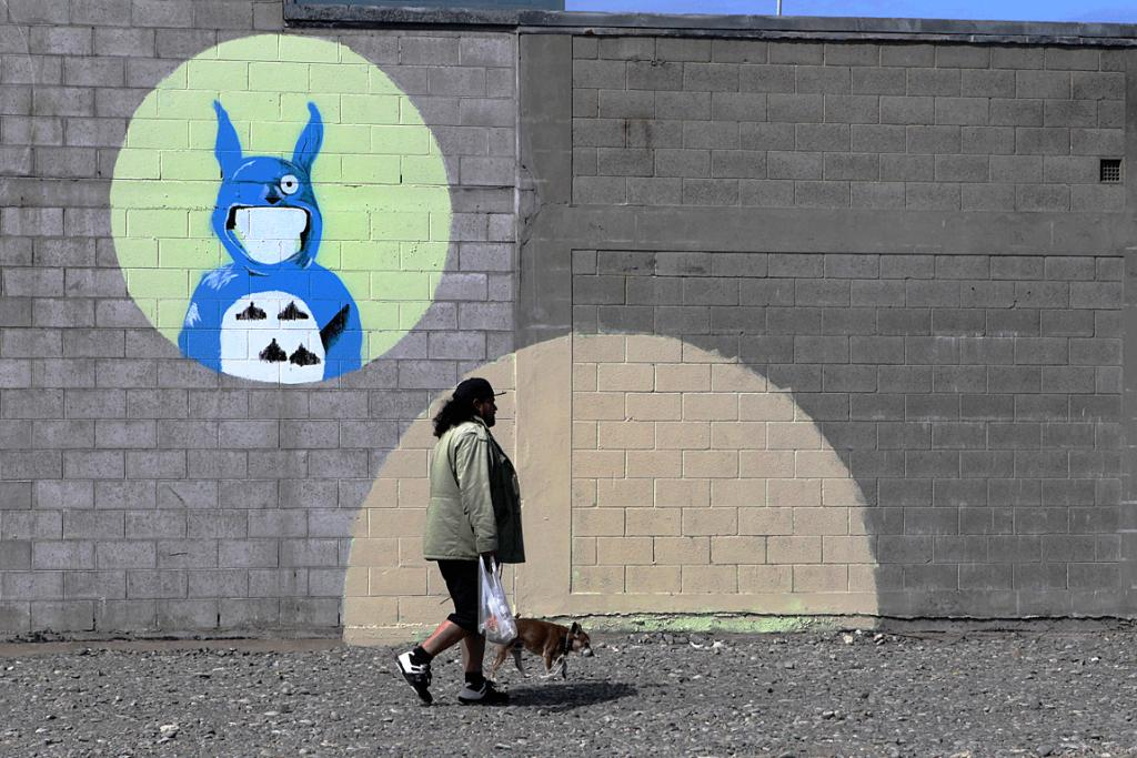 STREET ART: A man walks his dog on ground where shops once stood in New Brighton.
