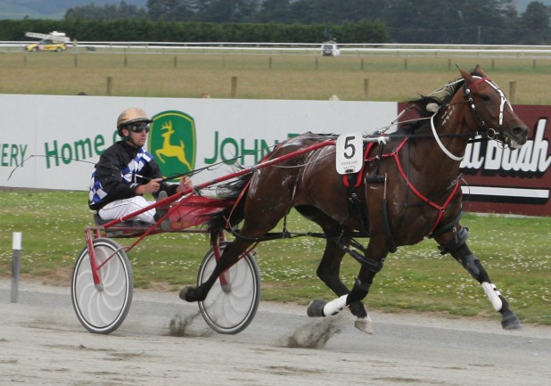SIZZLING: Canterbury raider Cullen's Mercy (Matthew Williamson) scores in track record time at Winton yesterday.
