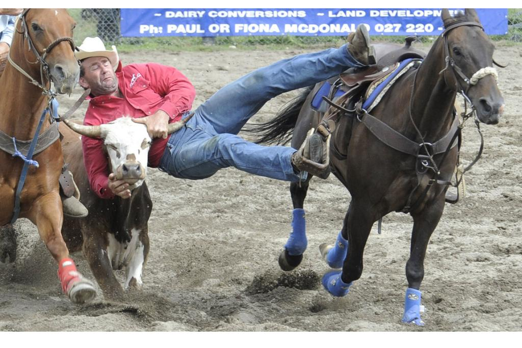 Warren Nichol holds on tight during the Steer Wrestling at the 46th annual Te Anau Rodeo.
