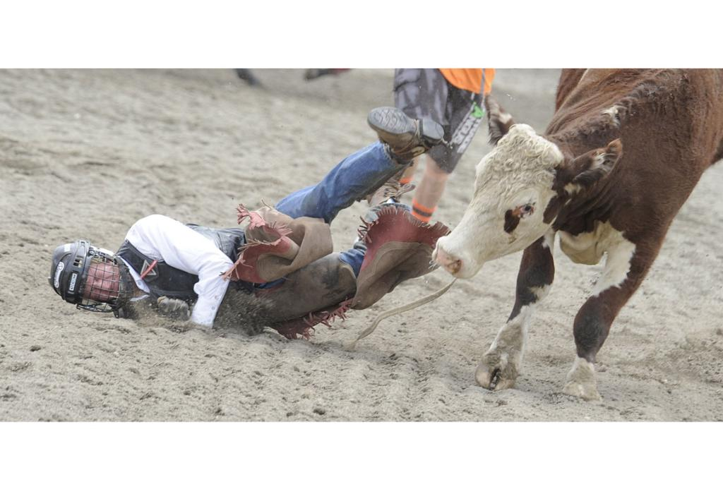 John Hurst, from Darfield, comes to grief in the 2nd division Bull ride at the 46th annual Te Anau Rodeo.
