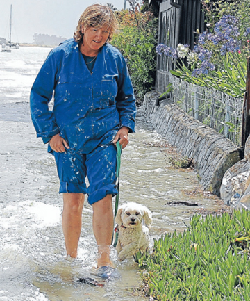 GOING WALKIES:  Cindy Holden walks dog Buddy at Monaco.