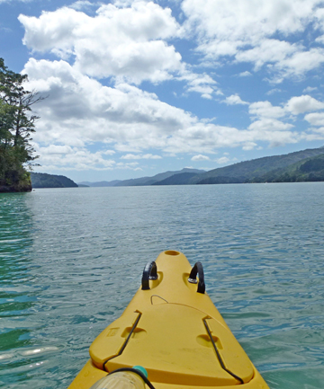 QUEEN CHARLOTTE SOUND: How many other places in the world this beautiful and in the height of summer could be this free of other people.