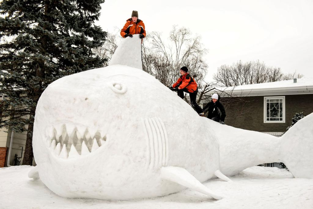 Connor, Trevor and Austin Bartz, built an almost 5m high snow shark at their Minnesota home. It took the brothers around 95 hours.
