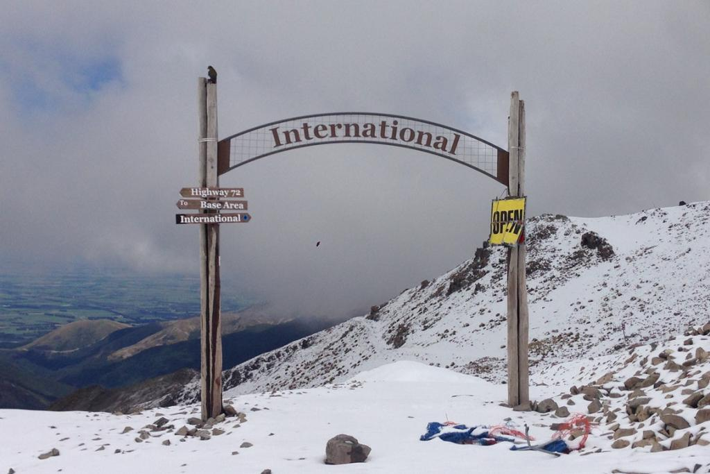 PERFECT VIEW: A kea sits atop a post on the Mt Hutt skifield.