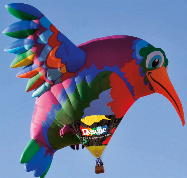 Balloons Over Waikato 2014, Hummingbird balloon