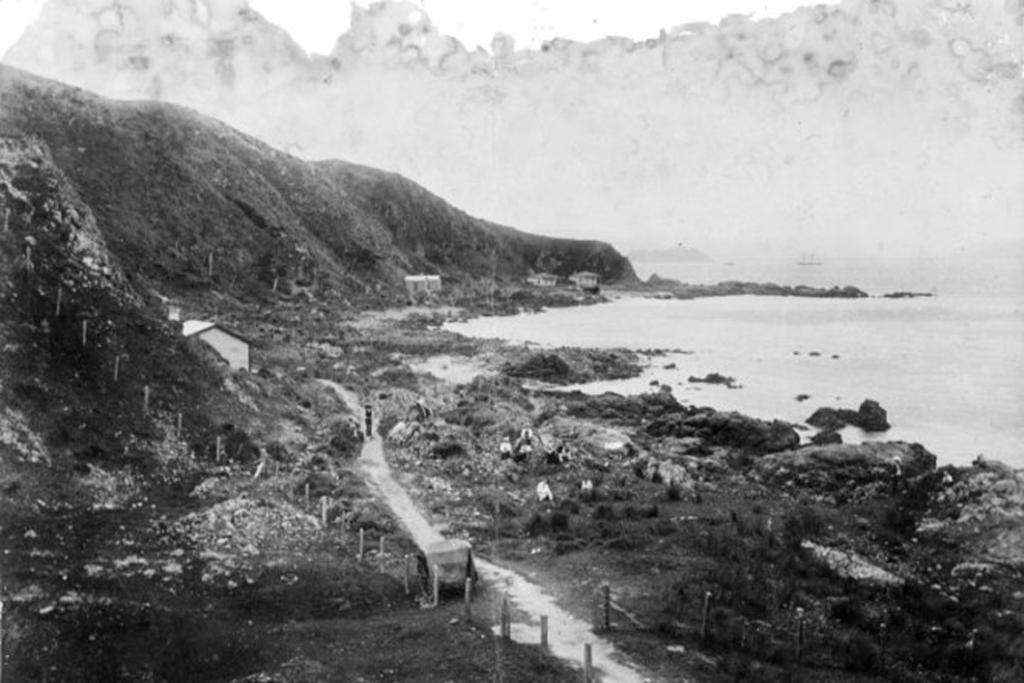 1890: Karaka Bay Rd was basically a goat track in the early years of settlement.