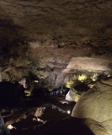 """Located in northern Puerto Rico, Camuy River Cave Park's """"show"""" cave, Cueva Clara, or Clear Cave, contains various cave formations. The cave is also home to bats, which can be seen swooping overhead."""