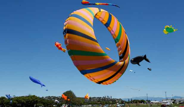 HIGH FLIERS: Colourful kites fill the sky at last year's festival in Neale Park.