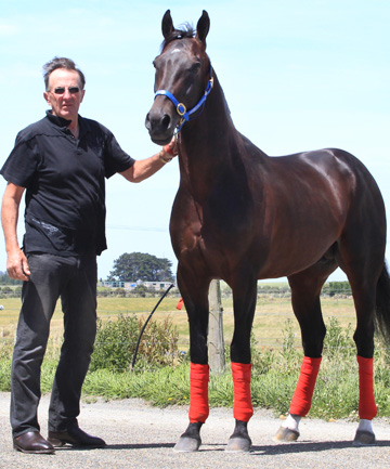 Christchurch co-trainer Graham Court with his millionaire pacer Terror To Love in Invercargill.
