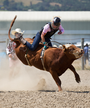 COMING IN FAST: Ashburton's Annabelle Wiggins during the Open Barrel Race at the Richmond Rodeo at the Richmond Show Grounds on Saturday.