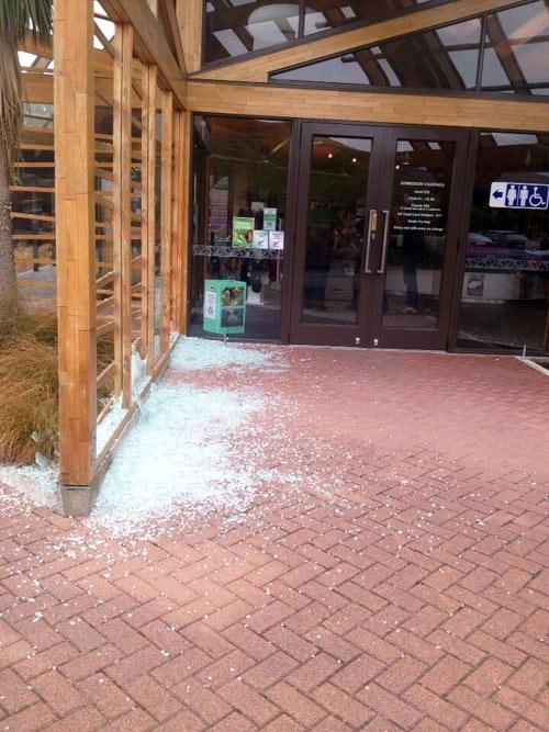 "Brenda Anderson tweeted this photo: ""Damage at Pukaha Mt Bruce just after today's quake."""