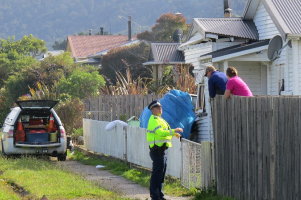 Police speak to neighbours at the scene of the crash.