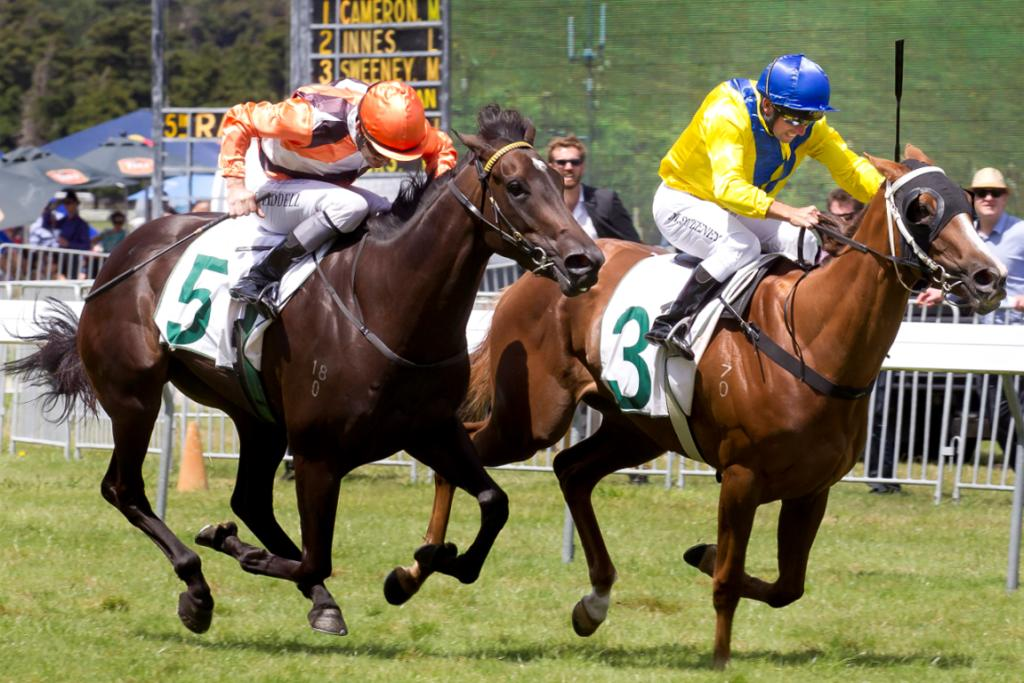 Jockey Mark Sweeney on Moozoon, number 3, in close competition with Jonathan Riddell on Miss Selby.