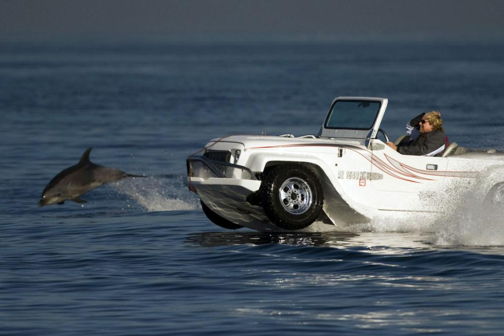 ON WATER GRACE: A dolphin swims alongside Dave March driving his WaterCar in Californian waters.
