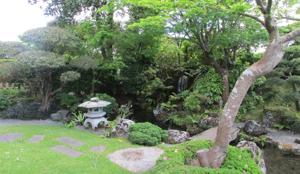 GARDEN GONE: Auckland Zoo's Japanese friendship garden has now been removed.
