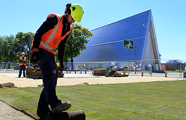 GETTING READY: David Giddens lays grass at the CTV site.