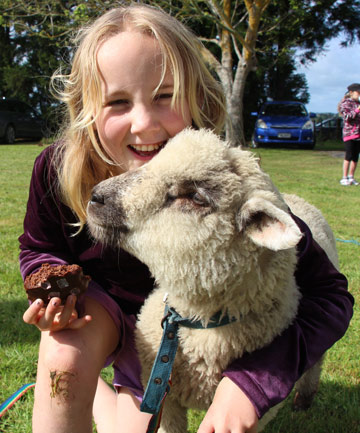 Fighting spirit: Samantha Robertson, pictured at Pukekawa School's calf club day in 2013, is in an induced coma after being hit by a car while riding her bike last week in Pukekawa.