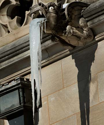 NATURAL MYSTERY: Icicles form on the gargoyle downspouts of the Washington National Cathedral in Washington
