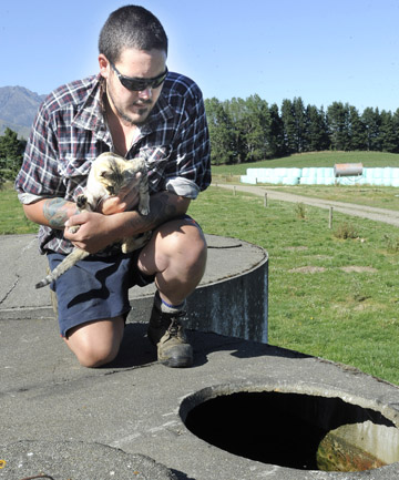 FARM DRAMA: Te Anau farmer Steve Pei holds his family's pet cat Lucky, which he rescued after it fell into a water tank.