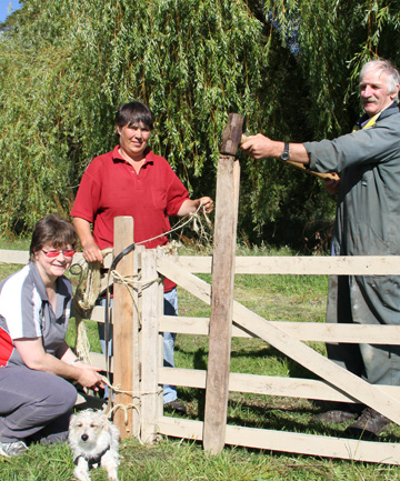 Waiau A&P Show produce co-ordinator Anne-Marie Erskine, with Jag, sheep marshall Anita Erskine and sheep director and life member Don Brown assemble the sheep pens in readiness for tomorrow's show.