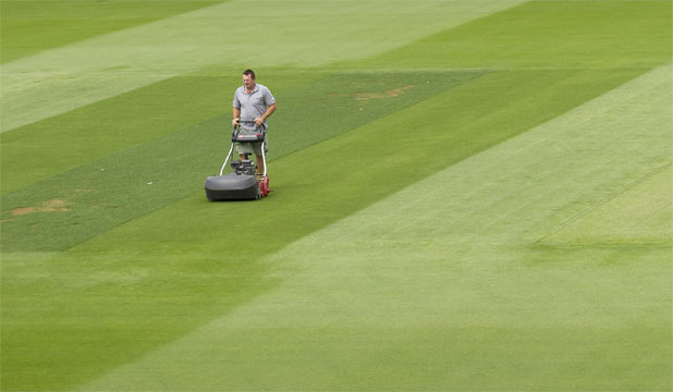 SPOT THE PITCH: Basin Reserve curator Brett Sipthorpe works on a green wicket block ahead of the second cricket test, starting Friday.
