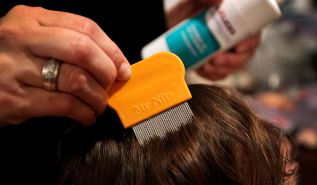 KILLER COMB: There are many treatments for nits in the market, but you'll always need a comb.