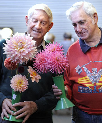 Te Anau District Flower Show