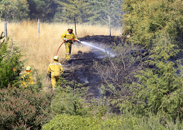 Volunteer Firefighters and The Rural Fire Force to put out a scrub fire on the Forest Hill Walk section of the Wither Hills Farm Park