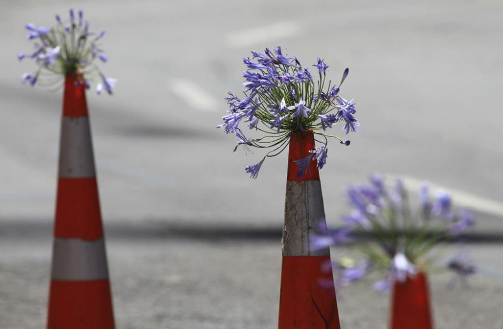 DECORATED: Third anniversary of the Christchurch February 22nd 2011 Earthquake. Road cones were decorated with flowers.
