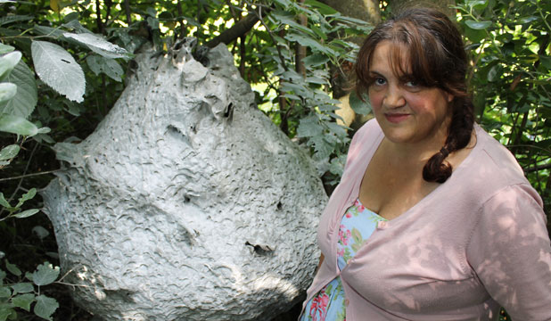 Inter-galactic: Normanby's Claire Linn thinks the wasp nest found near her home looks like something from out of space.