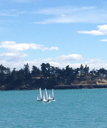 FUN ON WATER: Adults can learn to sail on Caroline Bay.