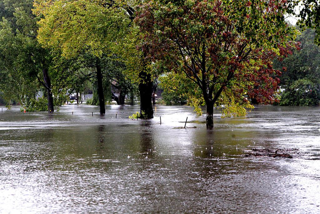 BROKEN BANKS: The Avon east of Fitzgerald Ave floods over the street.