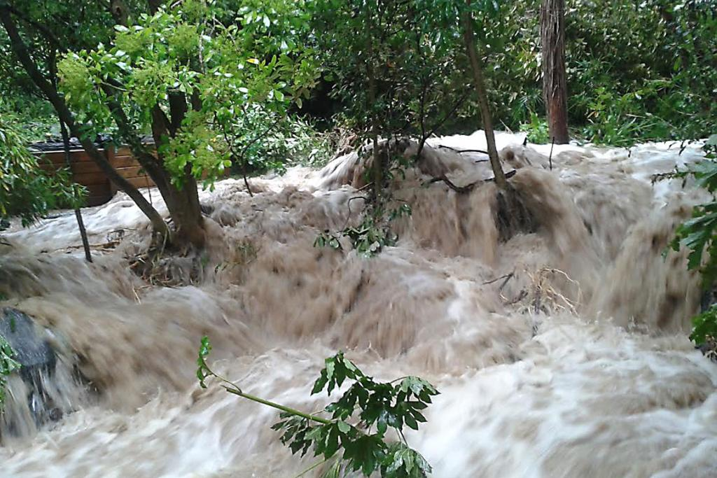 VALLEY FLOODING: Heathcote Valley resident Loius Dudson sent in this picture of his garden stream in flood.