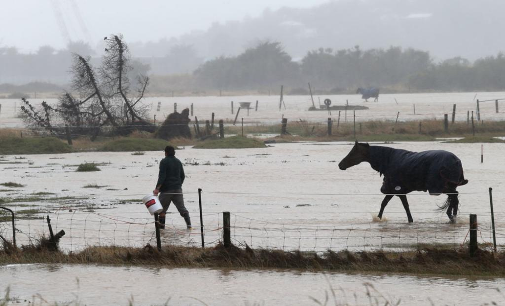 A horse is fed emergency food stocks on Farmland flooded looking from Tunnel Road, in Heathcote.