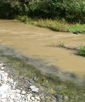 WATER CONCERNS: Barker's Creek, in the Waihi River catchment, pictured during a large flow, appears to suffer from high levels of phormidium, E.coli and nitrates.