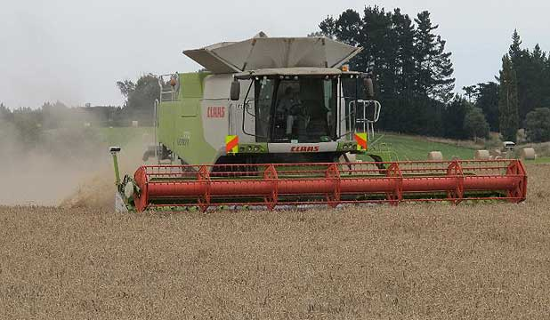 Harvester at work.