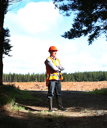 PENDING HARVEST: Mike Mitchell, project manager for Invercargill-based forestry management company IFS Growth, is preparing for a mammoth harvest in years to come.