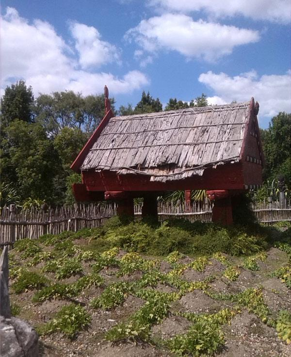 BEFORE: Ngati Wairere spokesman Wiremu Puke took this photo inside Te Parapara Garden during the Hamilton Gardens Arts Festival last month. Mr Puke said council staff are neglecting the garden.