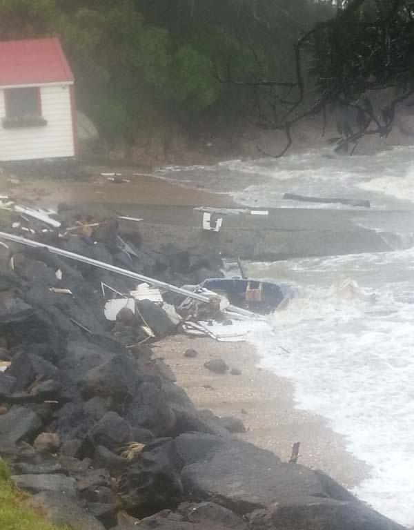 An early victim of the storm at Paihia.