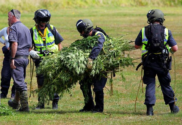 Police and the Air Force during a cannabis recovery operation in Taranaki.