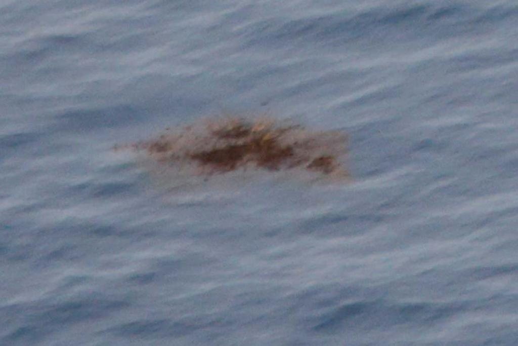 Solid matter is pictured floating in the southern Indian Ocean seen from a Royal New Zealand Air Force P-3K2 Orion aircraft searching for missing Malaysian Airlines flight MH370.
