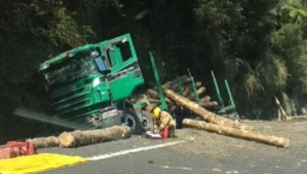TRAPPED: A logging truck crashed into a roadside ditch on the Kaimai ranges.